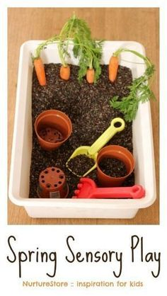Spring sensory play tub with carrots - NurtureStore Spring sensory play activities for kids - fun for Easter too!<br> Such a fun spring sensory play tub, with extra ideas for spring activities for kids. Spring Activities, Infant Activities, Preschool Activities, Easter Activities For Toddlers, Nursery Activities, Motor Activities, Family Activities, Spring Craft For Toddlers, Tuff Tray Ideas Toddlers