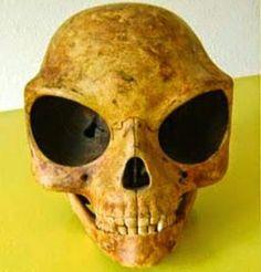 În Honduras, în orașul Lubaantun, un teritoriu care aparținea culturii mayașe, a fost descoperit în