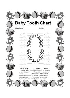 baby teeth chart printable | Free Printable Tooth Chart | clip art ...