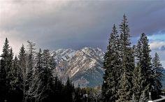 Canada, Alberta.(5)  00745
