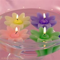 Summer daisy floating candles