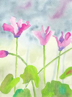 30 In 30, Day Twenty-Two. Cyclamen, watercolor on 140 lb. cold press paper. © Sheila Delgado 2013