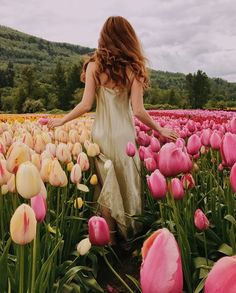 Take a beautiful back photo? You must learn these tricks! Creative Photography, Portrait Photography, Fashion Photography, Spring Photography, Beautiful Flowers, Beautiful Pictures, Tulip Festival, Tulip Fields, Glamour