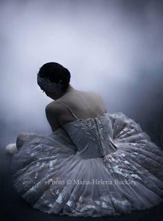 Photographer Maria-Helena Buckley