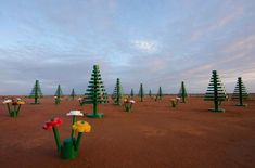 Lego forest, New South Wales