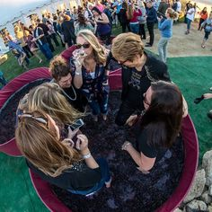 22 Best Solvang Stomp images in 2019