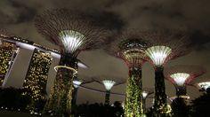 Lilluminazione può migliorare la qualità del paesaggio? La luce è stata impiegata per sottolineare la qualità unica della progettazione del paesaggio e collegare le diverse sezioni de...