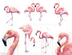 Pink Flamingo Watercolor Flamingo Artwork by OlechkaDesign on Etsy