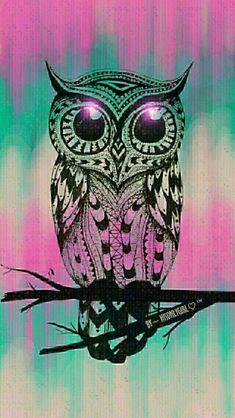 Owls girly