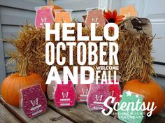 Get your wonderful fall scents at breed.scentsy.us  You can text me at 208-680-9386 or email me at brandireed2003@ho... with any questions Follow me on Facebook at www.facebook.com/reed.brandi16