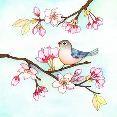 Birdie in a cherry blossom tree