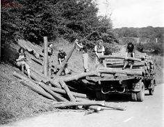 "During World War II, 9,000 British women were recruited to take over the nation's forestry sector in the Women's Timber Corps. Nicknamed ""lumberjills,"" these logging ladies felled trees, processed timber and transported the wood for manufacturing into ""telegraph poles, road blocks, packaging boxes and gun butts for the war effort, and even crosses for war graves,"" the BBC reports. In 2013, the UK Forestry Commission erected a memorial sculpture (cleverly called Pul..."
