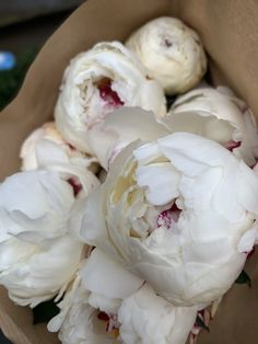 WHITE FLUFFY PEONIES // such gorgeous peonies in our Hartley Wintney shop ready to be made into a bridal bouquet!WHITE FLUFFY PEONIES // such gorgeous peonies in our Hartley Wintney shop ready to be made into a bridal bouquet! Peonies And Hydrangeas, Peonies Garden, Peonies Bouquet, Pink Peonies, Yellow Roses, Pink Roses, Ranunculus Flowers, Peony Arrangement, Peonies Centerpiece