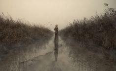 autumn days by Ingo Kremmel  on 500px