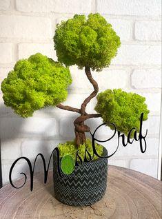Moss Wall Art, Moss Art, Decor Crafts, Home Crafts, Moss Decor, Vertical Garden Diy, Moss Garden, Flower Crafts, Dried Flowers