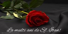 Tragedies Have Struck The Bachelor Cast Members - Several deaths - The Bachelor Tv Show, Thank You Pictures, Thank You Images, Happy Rose Day Wallpaper, Flower Wallpaper, Rebecca Minkoff, Happy New Week, Friends Image, Dolphins
