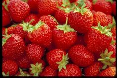 Mesabi Strawberry