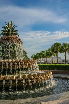 Charleston, SC ... The lovely pineapple water fountain across the street from my office downtown... Life is good!!