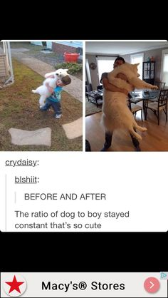 The dog to boy ratio stayed the same