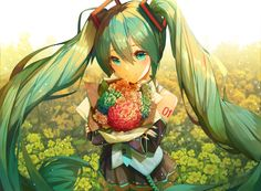 For all kinds of moe art. Especially cute anime girls and boys being cute. Content from anime, manga,. Manga Anime, Anime Art, Miku Chan, Miku Cosplay, Mikuo, Anime Store, Kuroo Tetsurou, Anime Costumes, Vocaloid