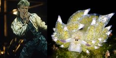Bowiebranchia Nudibranchia or other opisthobranchia compared to the various looks of David Bowie.