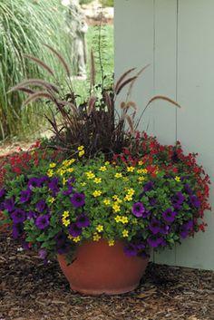 Container Garden Designs