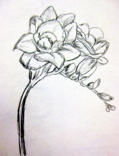 ... did this! | Tattoos :) | Pinterest | Art, Flower and Freesia flowers Unique Flower Tattoos