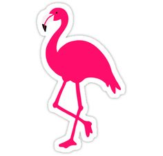 Calling all flamingo lovers! Represent with this cute pink flamingo design! Makes a great gift for friends, family, or yourself! Flamingo Craft, Flamingo Decor, Pink Flamingos, Flamingo Birthday, Flamingo Party, Cute Family, Cricut Creations, Printable Stickers, Cute Pink
