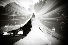 photo under the veil! Wish I would've thought of this!