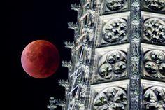 Blood moon terjadi saat gerhana bulan berpadu dengan fenomena super moon di mana bulan menempati jarak terpendek dengan bumi. Ini adalah penampakan blood moon di Cologne, Jerman. (istimewa/detikcom/gettyimages)