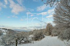 Neuschnee im Winter - auf http://ronni-shop.fineartprint.de