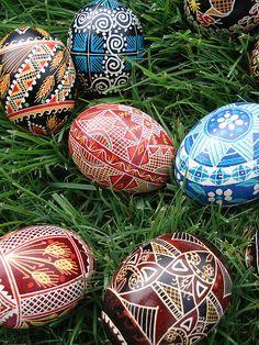 eggs | Flickr - https://www.flickr.com/photos/stormyafternoon/482274984/in/set-72157600042061811/