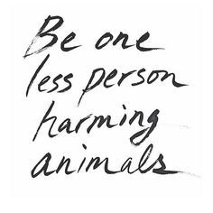 Repinned by SelflessRebel.com - Vegan Apparel & Accessories  You are making a difference. Via @the_vegan_collective