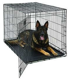 MidWest Life Stages Folding Metal Dog Crate Double Door 48 Inch w Divider Large Dog Breeds, Large Dogs, Small Dogs, Xxxl Dog Crate, Dog Crate Divider, Extra Large Dog Crate, Wire Dog Crates, Animales, Pets