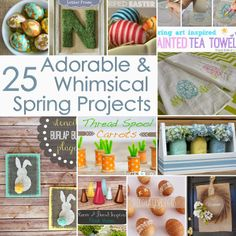 Spring Project Ideas