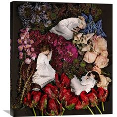 "Global Gallery 'Sleeping in Flowers' by James Hall Photographic Print on Wrapped Canvas Size: 30"" H x 26.4"" W x 1.5"" D"