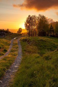 Summer walks, brings back memories Beautiful World, Beautiful Places, Beautiful Pictures, Landscape Photos, Landscape Photography, Summer Nature Photography, Skier, Plein Air, Nature Pictures