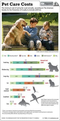How Much is That Doggy Worth? (Infographic) As pet owners, we know that there is so much more than just buying food each day. This infographic summarizes just where the money goes for our pets.| Pet Care Costs & ASPCA | Caring for Dogs & Cats | LiveScience