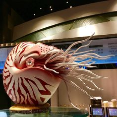 Las Vegas pastry chef Amaury Guichon made a beautiful sculpture of a Nautilus cephalopod out of chocolate Chocolate Showpiece, Chocolate Art, Chocolate Gifts, Homemade Chocolate, Chocolate Dreams, Modeling Chocolate, Bread Art, Food Sculpture, Chocolate Sculptures