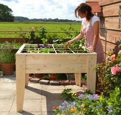 Vegetable gardening. Also suitable for balcony's and small gardens.