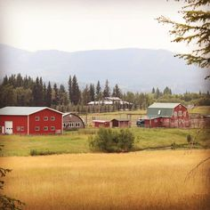 This would be my dream ranch to live on! Watch Heartland, Heartland Ranch, Journal Inspiration, Country Life, My Dream Home, Barns, Homesteading, Tv Series, Bullet Journal