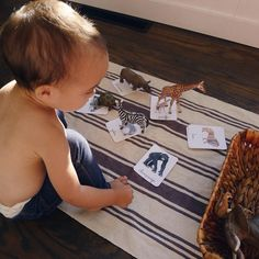 matching schleich animals with cards #montessori #schleich