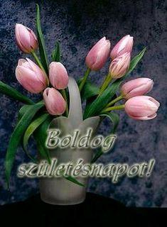 Holiday Gif, Name Day, Birthdays, Happy Birthday, Flowers, Plants, Einstein, Humor, Disney