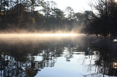 Rick's Waccamaw River | photos from the Waccamaw River
