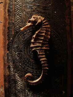 Look at this seahorse door handle!  (Put it on a lighter color, people!)