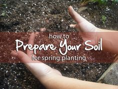 how to prepare your soil for spring planting #spring #garden #soil