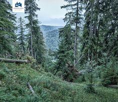 Bildergebnis für schmugglerregion klausenberg fellhorn Berg, Mountains, Nature, Travel, Naturaleza, Viajes, Destinations, Traveling, Trips