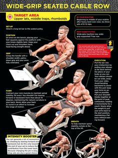 seated cable row - Google Search