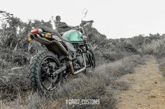 Meet Modified Royal Enfield Himalayan with Dual Underseat Exhausts Himalayan Royal Enfield, Bike India, High Scope, Royal Enfield Modified, Bike Sketch, Enfield Motorcycle, Forest Green Color, Green Color Schemes, Green Bodies