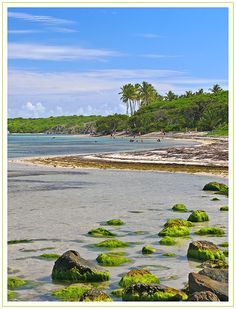 Sainte-Anne,anse Michel beach